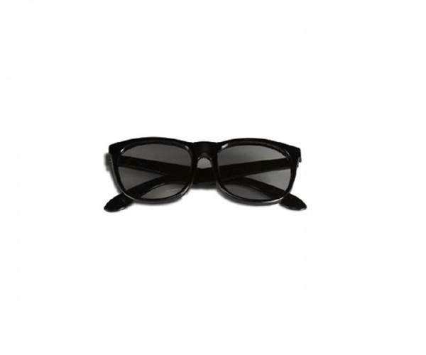 Ersatzbrille Stereotest Hausfliege