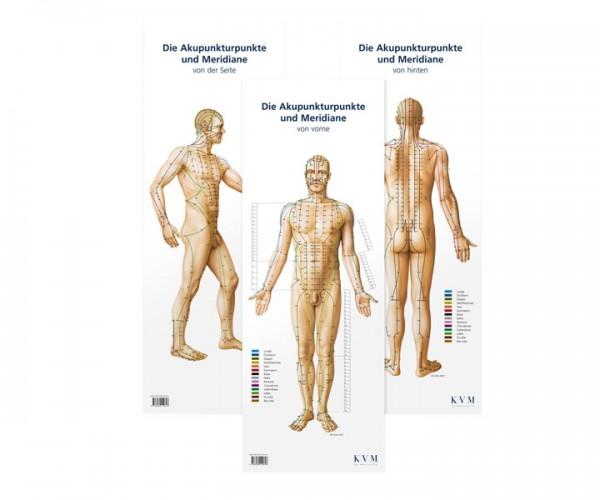 Akupunktur Poster-Set
